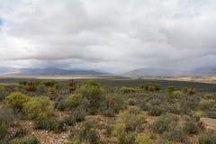 Kleine Karoo, Outshoorn, South Africa Royalty Free Stock Images