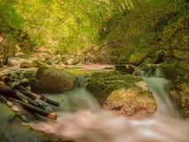 Kleine Kaskade untergetaucht in der wilden Natur Stockfotos