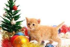 Kleine katje en Kerstmisornamenten Royalty-vrije Stock Foto's