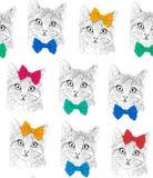 Kleine katten met bogen Naadloos patroon Kleuren grafische illustratie Achtergrond Stock Foto