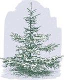Kleine Kerstboom Stock Afbeelding