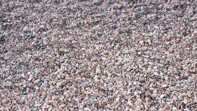 Kleine kiezelsteen Heel wat kleine stenen stock videobeelden