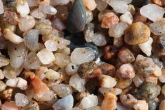 Kleine kiezelstenen op het strandclose-up Royalty-vrije Stock Fotografie