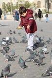 Kleine kinderen die de vogels voeden Stock Afbeeldingen