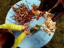 Kleine kinderen die, en in de tuin met grond, bladeren, noten, stokken, installaties, zaden tijdens een school expolring tuiniere royalty-vrije stock afbeelding