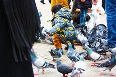 Kleine kinderen op een de winterdag die in een vierkant in een Europese stad spelen Zij genieten van achtervolgend duiven en voed royalty-vrije stock afbeeldingen