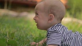 Kleine Kinderlügen auf der Grasschreinahaufnahme stock video footage