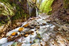 Kleine kreek in Abchazië royalty-vrije stock afbeeldingen