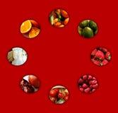 Kleine Kreise voll von Früchten Lizenzfreie Stockfotos