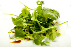 Kleine kruidsalade. Stock Fotografie