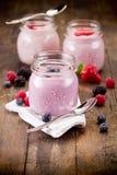 Kleine kruiken met eigengemaakte yoghurt met bessen Stock Foto
