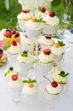 Kleine Kuchen mit Beeren Stockfotografie