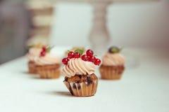 Kleine Kuchen mit Blaubeeren, Korinthen und Moosbeeren Muffinesprit Lizenzfreie Stockfotografie