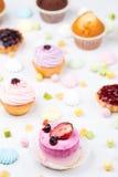 Kleine Kuchen mit dem unterschiedlichen Anfüllen Lizenzfreie Stockfotografie