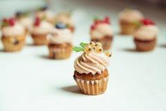 Kleine Kuchen mit Korinthen, Moosbeeren und Blaubeeren Muffinesprit Stockbilder