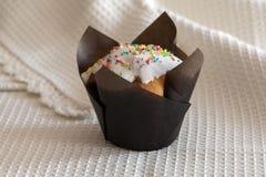 Kleine Kuchen mit weißer Glasur lizenzfreies stockbild