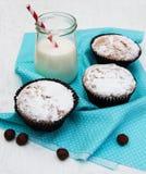 Kleine Kuchen und Milch lizenzfreies stockfoto