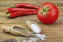 Kleine Lepel twee met Zout en Peper, Verse Tomaat Stock Foto's