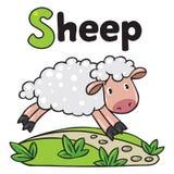 Kleine lustige Schafe, für ABC Alphabet S Lizenzfreies Stockbild
