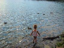 Kleine Mädchen, die Enten benennen Stockbild
