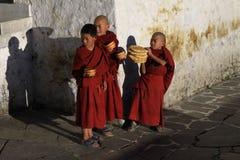 Kleine Mönche mit Frühstück stockfoto