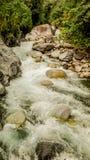 Kleine moedige rivier stock afbeelding