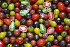 Kleine mooie, smakelijke kersentomaten verschillende kleuren Stock Foto's