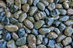 Kleine natte steen. Royalty-vrije Stock Foto's