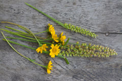Kleine nette Blumen auf dem grauen Holz Stockfotos