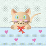 Kleine nette Katze Lizenzfreies Stockfoto