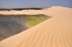 Kleine oase in de woestijn stock foto