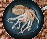 Kleine octopus op de pan Stock Foto's