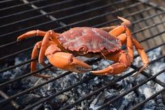 Kleine oranje krab op barbecue het koken Stock Afbeeldingen