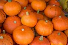 Kleine Oranje pompoenen Stock Foto's