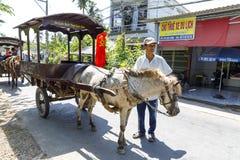 Kleine paarden met karren om toeristen dichtbij Mekong rivier in Vietnam te vervoeren stock afbeelding