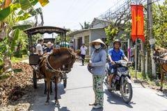 Kleine paarden met karren om toeristen dichtbij Mekong rivier in Vietnam te vervoeren royalty-vrije stock foto's