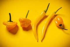 Kleine peper op een gele achtergrond Royalty-vrije Stock Fotografie