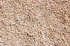 Kleine piecies van rotsen ter plaatse Lichtrode rotsen Royalty-vrije Stock Foto