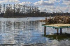 Kleine pijler op het meer, in de achtergrondzwanen Royalty-vrije Stock Foto