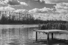 Kleine pijler op het meer, in de achtergrondzwanen Stock Foto's