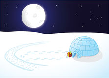 kleine Pinguine auf dem Eis nachts Stockfotos