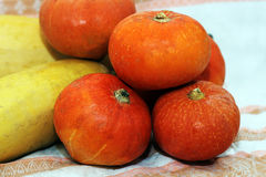 Kleine pompoenen en pompoenen, de herfst Stock Foto