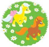 Kleine Ponys Lizenzfreie Stockbilder