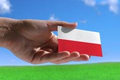 Kleine Poolse vlag Stock Afbeeldingen