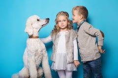 Kleine Prinzessin und hübscher Junge mit königlichem Pudel Liebe Freundschaft familie Studioporträt über blauem Hintergrund Lizenzfreie Stockfotos