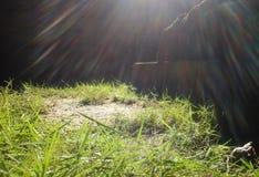 Kleine Regenbogen Stockfoto