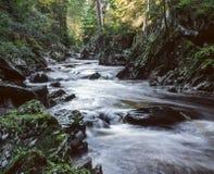 Kleine rivier Stock Afbeeldingen