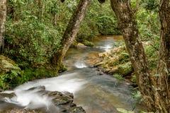 Kleine rivier Royalty-vrije Stock Fotografie