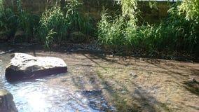 Kleine rivier royalty-vrije stock afbeelding