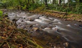 Kleine rivier in Costa Rica royalty-vrije stock afbeeldingen